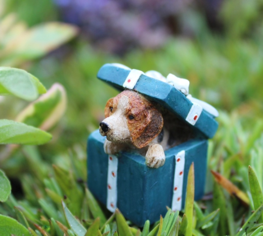 Fairy Garden Puppies and Miniature Cats